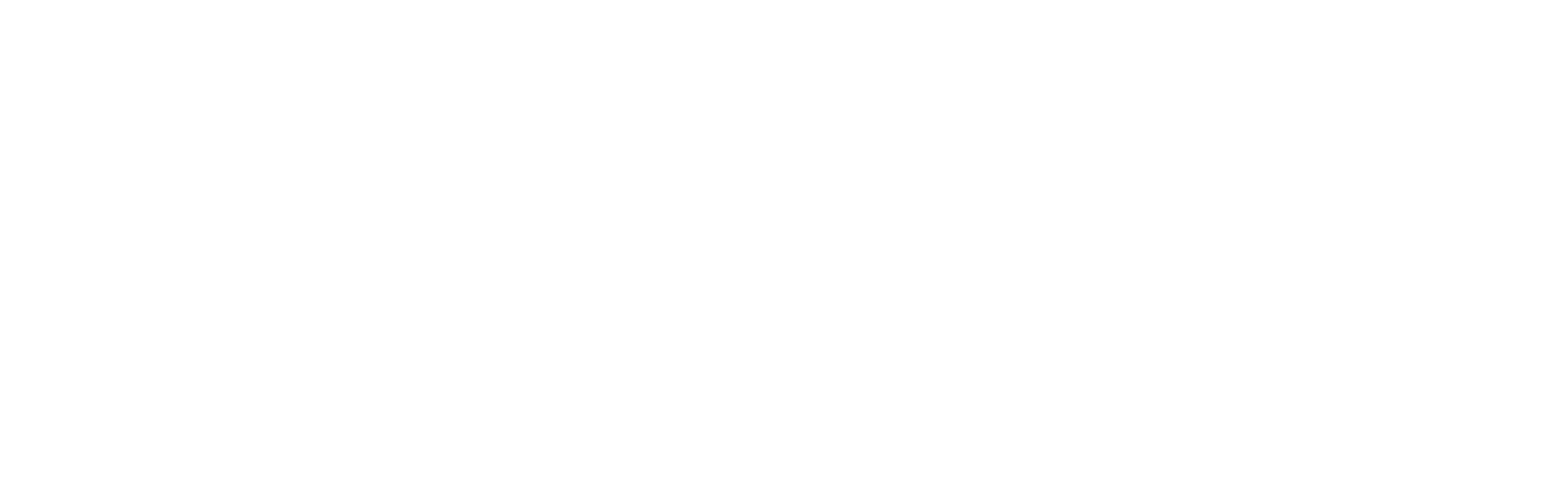 Logo Venios White